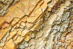 Η φέτα της πέτρας λικνίζει το γεωλογικό υπόβαθρο Στοκ Φωτογραφίες