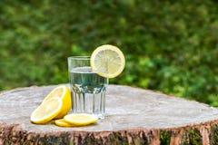 Η φέτα του λεμονιού σε ένα ποτήρι του νερού Στοκ Εικόνες