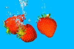 η φράουλα κολυμπά Στοκ Φωτογραφίες
