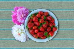 Η φράουλα βράζει Στοκ φωτογραφία με δικαίωμα ελεύθερης χρήσης