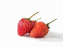 Η φράουλα στο άσπρο υπόβαθρο Στοκ Φωτογραφίες