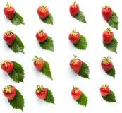 Η φράουλα στο σχέδιο φύλλων απομόνωσε το άσπρο υπόβαθρο Στοκ Εικόνες