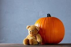 Η φρέσκα κολοκύθα και Teddy φθινοπώρου αντέχουν το παιχνίδι Στοκ φωτογραφία με δικαίωμα ελεύθερης χρήσης
