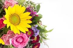 Η φρέσκια ανθοδέσμη των θερινών λουλουδιών δεν απομόνωσε κανένα λευκό Στοκ Φωτογραφίες
