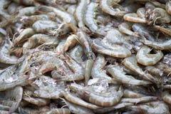 Η φρέσκια γαρίδα είναι στη φρέσκια αγορά Στοκ Εικόνα