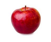Η φρέσκια κόκκινη Apple Στοκ εικόνες με δικαίωμα ελεύθερης χρήσης