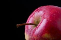 Η φρέσκια κόκκινη Apple Στοκ Φωτογραφία