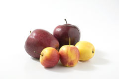 Η φρέσκια κόκκινη Apple Στοκ εικόνα με δικαίωμα ελεύθερης χρήσης