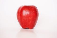 Η φρέσκια κόκκινη Apple Στοκ φωτογραφία με δικαίωμα ελεύθερης χρήσης