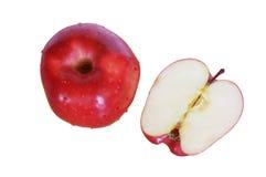 Η φρέσκια κόκκινη Apple Στοκ Εικόνα