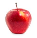 Η φρέσκια κόκκινη Apple Στοκ Εικόνες
