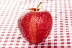 Η φρέσκια οργανική κόκκινη Apple Στοκ εικόνα με δικαίωμα ελεύθερης χρήσης