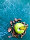 Η φρέσκια πράσινη Apple και ξηρά φύλλα με το πράσινο υπόβαθρο Στοκ φωτογραφία με δικαίωμα ελεύθερης χρήσης