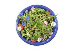 Η φρέσκια σαλάτα χορταριών με τα φυλλώδη πράσινα και nasturtium τα λουλούδια εξυπηρέτησε σε ένα μπλε κεραμικό κύπελλο στο λευκό Στοκ Εικόνες