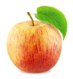 Η φρέσκια ώριμη Apple που απομονώνεται στο άσπρο υπόβαθρο Στοκ φωτογραφία με δικαίωμα ελεύθερης χρήσης
