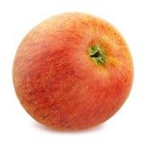 Η φρέσκια ώριμη Apple που απομονώνεται στο άσπρο υπόβαθρο Στοκ Φωτογραφία