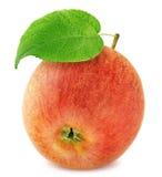 Η φρέσκια ώριμη Apple που απομονώνεται στο άσπρο υπόβαθρο Στοκ Εικόνα
