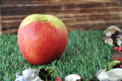 Η φρέσκια Apple στη χλόη με το ξύλινο υπόβαθρο Στοκ Εικόνα