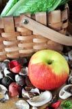 Η φρέσκια Apple στο ξηρό υπόβαθρο εγκαταστάσεων Στοκ φωτογραφίες με δικαίωμα ελεύθερης χρήσης