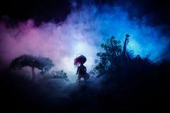 Η φρίκη αποκριές διακόσμησε την εννοιολογική εικόνα Μόνο κορίτσι με το φως στο δάσος τη νύχτα Σκιαγραφία του κοριτσιού που στέκετ στοκ φωτογραφίες με δικαίωμα ελεύθερης χρήσης