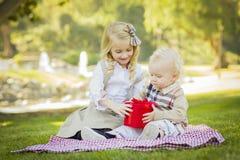 Η φροντίζοντας αδελφή δίνει στον αδελφό μωρών της ένα δώρο στο πάρκο Στοκ φωτογραφίες με δικαίωμα ελεύθερης χρήσης