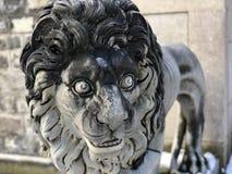 Η φρουρά λιονταριών στοκ εικόνα με δικαίωμα ελεύθερης χρήσης