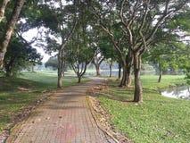 Η φυσική διαδρομή του πάρκου στοκ φωτογραφίες