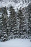 Η φυσική ομορφιά των δύσκολων βουνών του Κολοράντο το χειμώνα Στοκ φωτογραφία με δικαίωμα ελεύθερης χρήσης