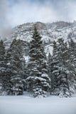 Η φυσική ομορφιά των δύσκολων βουνών του Κολοράντο το χειμώνα Στοκ Εικόνα