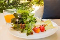 Η φυτική σαλάτα για το πρόγευμα είναι εύκολο να ήταν ευεργετική στο σώμα στοκ εικόνα με δικαίωμα ελεύθερης χρήσης