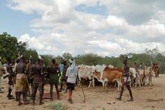 Η φυλή Hamar στην κοιλάδα Omo της Αιθιοπίας Στοκ Φωτογραφίες