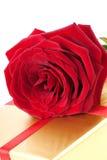 η φωτογραφία δώρων κόκκινη αυξήθηκε ενιαίος στοκ φωτογραφία με δικαίωμα ελεύθερης χρήσης