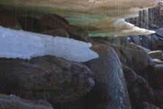 Η φύση άνοιξη Στοκ εικόνα με δικαίωμα ελεύθερης χρήσης
