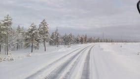 Η φύση του βυθού Σιβηρία στοκ εικόνα με δικαίωμα ελεύθερης χρήσης