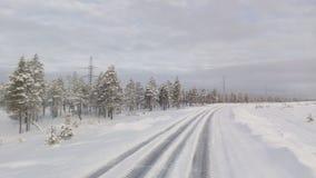 Η φύση του βυθού Σιβηρία στοκ εικόνες
