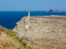 Η φύση των ελληνικών νησιών Στοκ φωτογραφία με δικαίωμα ελεύθερης χρήσης