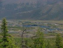 Η φύση Chukotkа Το πρώιμο φθινόπωρο Στοκ Εικόνες