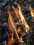 Η φλόγα είναι η δύναμη του καψίματος Στοκ Εικόνα