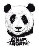 Η χαριτωμένη απεικόνιση panda, χέρι που σύρεται αντέχει Στοκ Εικόνες