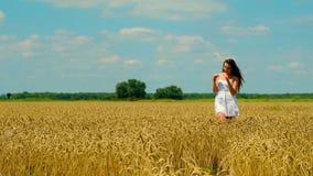 Η χαριτωμένη νέα γυναίκα brunette με όμορφο μακρυμάλλη το άσπρο σύντομο καλοκαίρι sundress σχίζει spikelet του σίτου απόθεμα βίντεο