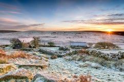 Η χειμερινή ανατολή σε Bodmin δένει Στοκ Φωτογραφία