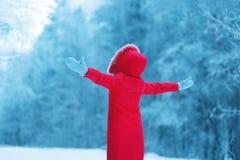 Η χειμερινή εποχή είναι ανοικτή! Η αφηρημένη σκιαγραφία μιας γυναίκας απολαμβάνει Στοκ Εικόνα
