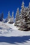Η χειμερινή ιστορία Στοκ Φωτογραφία