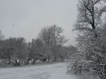 Η χειμερινή πόλη Στοκ Εικόνες