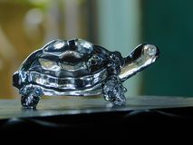 Η χελώνα κρυστάλλου χτυπά τη φύση Στοκ εικόνες με δικαίωμα ελεύθερης χρήσης