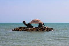 Η χελώνα αγαλματώδης Στοκ Φωτογραφίες