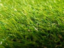 η χλόη ανασκόπησης απομόνωσε το λευκό Φρέσκια σύσταση χλόης χορτοταπήτων πράσινος τέλειος χλόης Στοκ Εικόνες