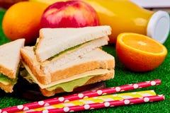 η χλόη γευμάτων αγοριών έχει λίγη picnic μεσημεριού λιβαδιών πίτσα δύο στοκ εικόνα με δικαίωμα ελεύθερης χρήσης
