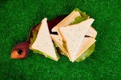 η χλόη γευμάτων αγοριών έχει λίγη picnic μεσημεριού λιβαδιών πίτσα δύο στοκ εικόνες