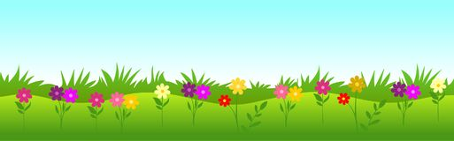η χλόη λουλουδιών ανασκόπησης απομόνωσε το λευκό Στοκ φωτογραφία με δικαίωμα ελεύθερης χρήσης